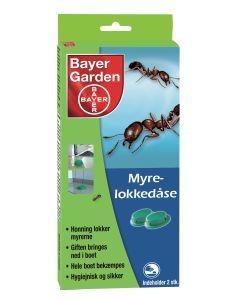 Baythion myrelokkedåse