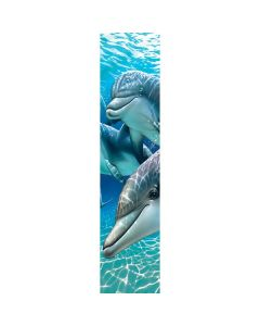 DOLPHINS 5036